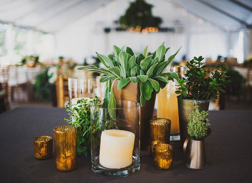 green_riverwedding