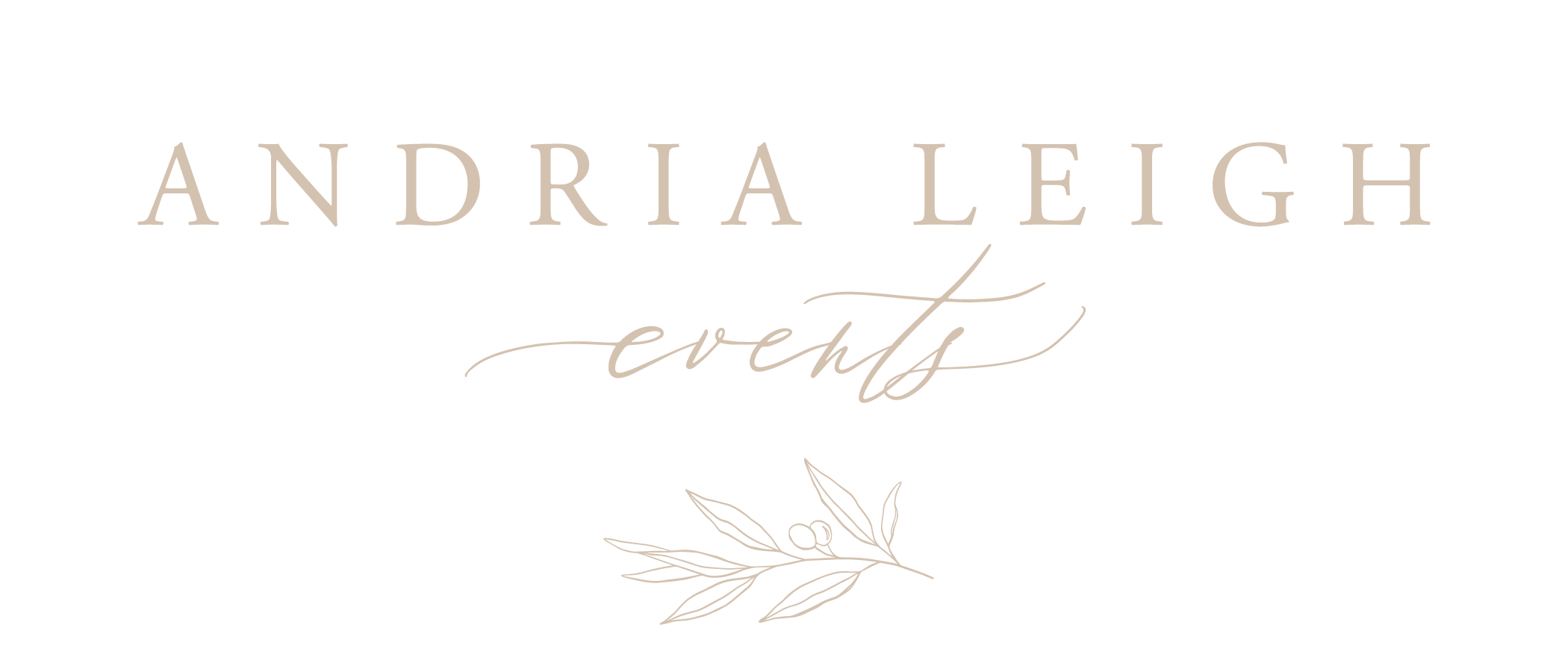 Andria Leigh Events Wedding Planner