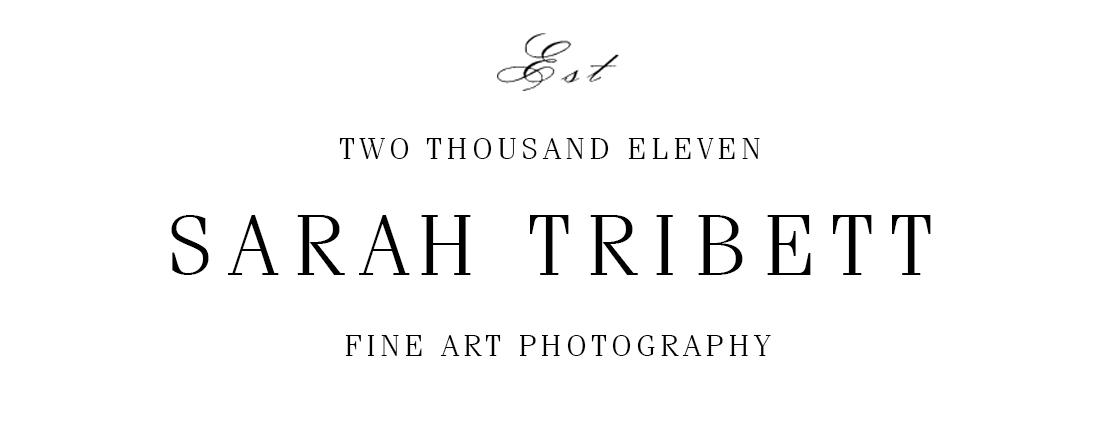 Sarah Tribett Photography - Austin Wedding Photography