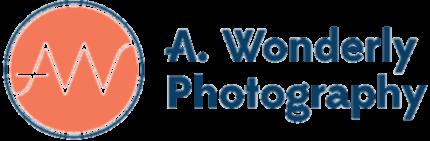 A. Wonderly Photography - Austin Wedding Photography